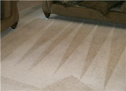 carpet cleaner bow, nh
