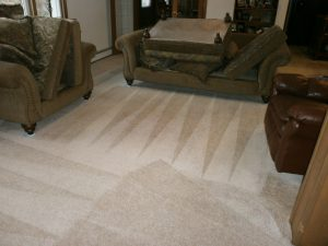 Carpet Cleaning Company - Concord, NH