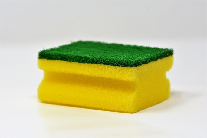 mold removal sponge picture